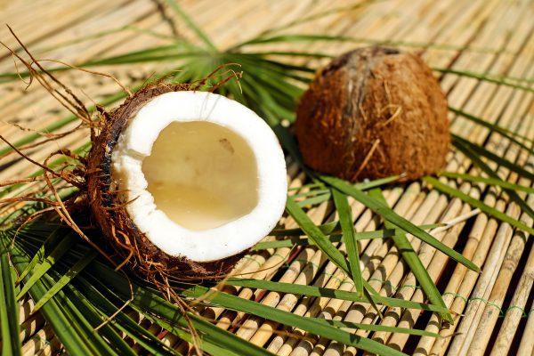 coco dietfresh