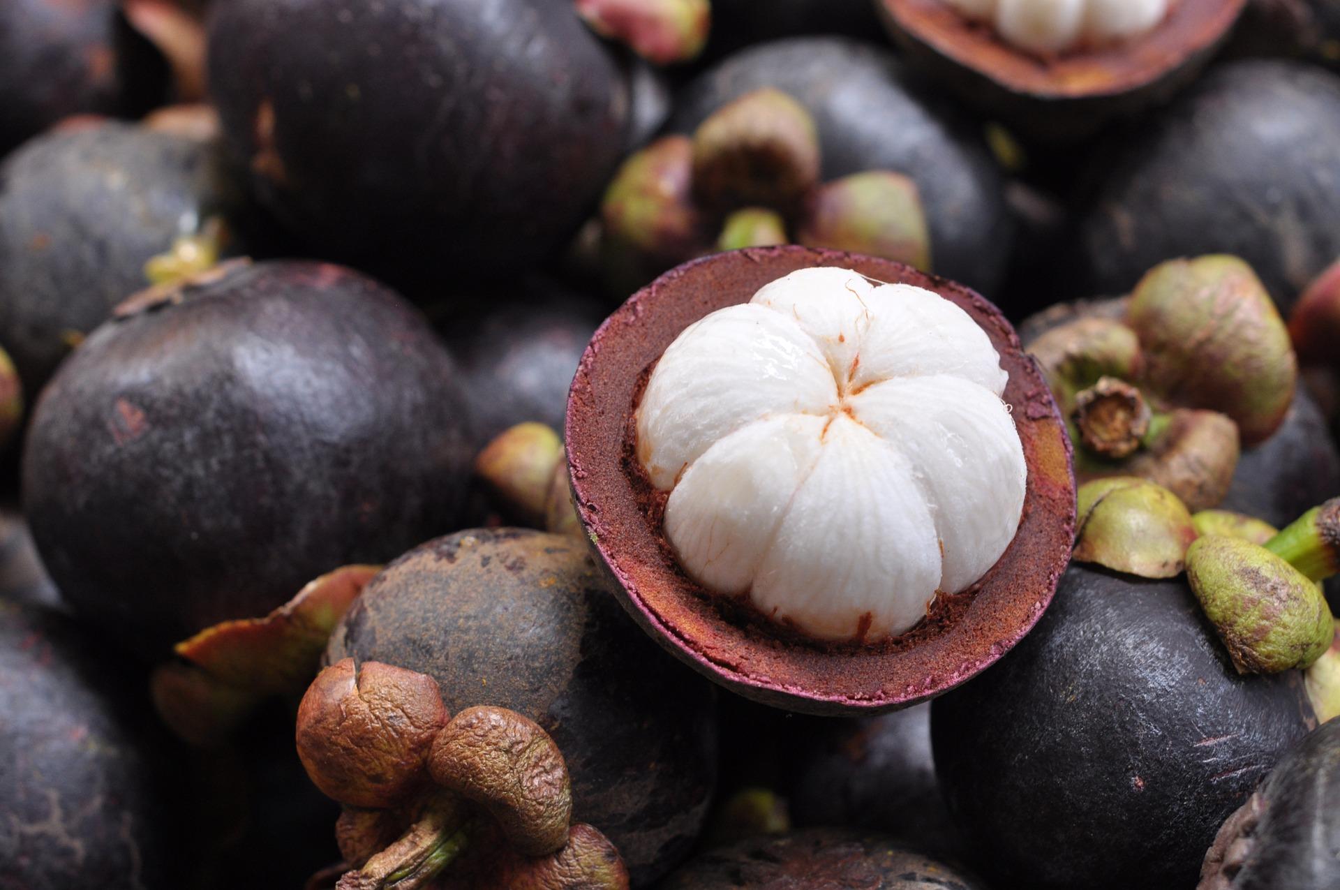 mangostan dietfresh
