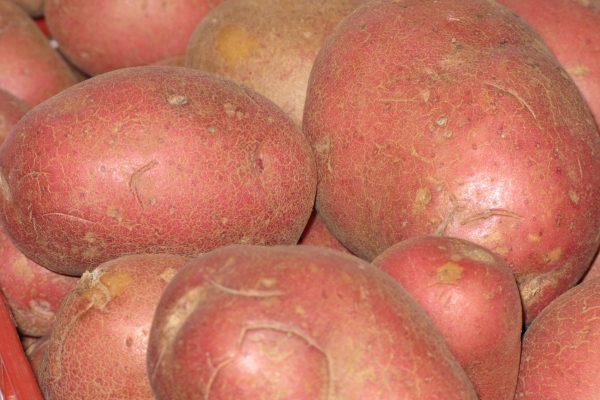 patata roja dietfresh