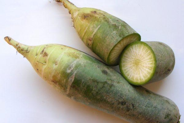 rabano verde dietfresh