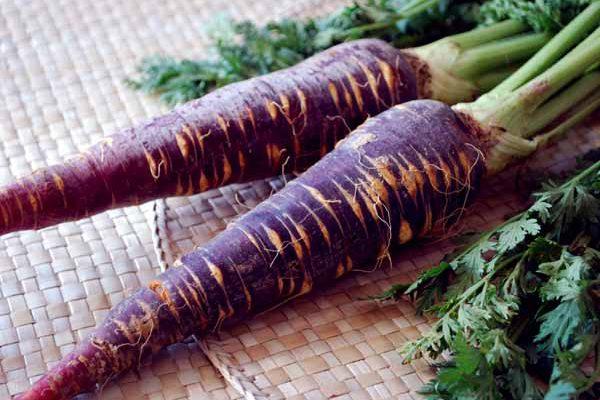 zanahoria-morada dietfresh